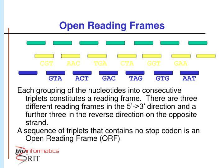 Open Reading Frames