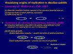 visualizing origins of replication in bacillus subtilis