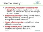 why this meeting