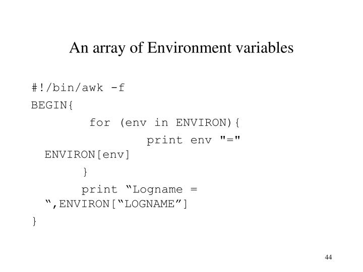 An array of Environment variables