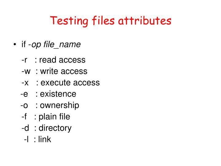 Testing files attributes