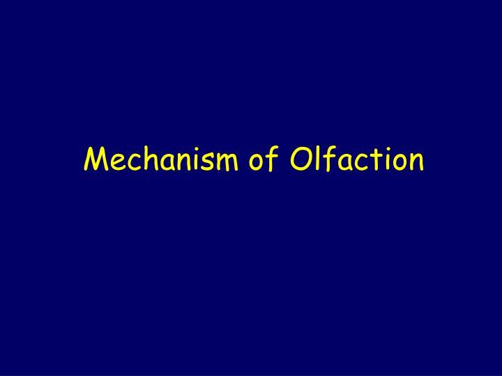 Mechanism of Olfaction