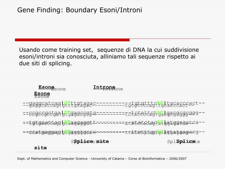 Gene Finding: Boundary Esoni/Introni