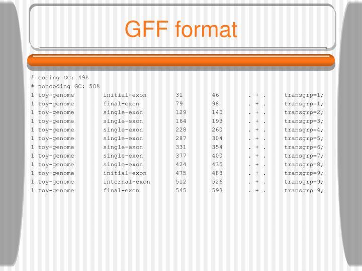 GFF format