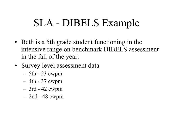 SLA - DIBELS Example