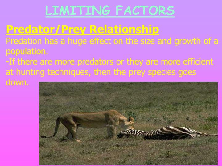 LIMITING FACTORS