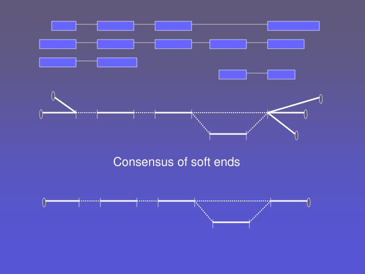 Consensus of soft ends