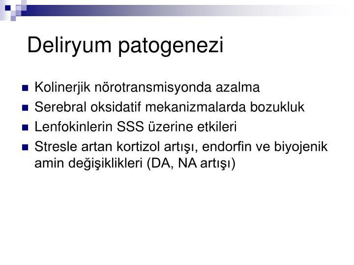 Deliryum patogenezi