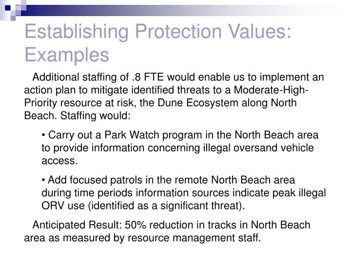 Establishing Protection Values: Examples