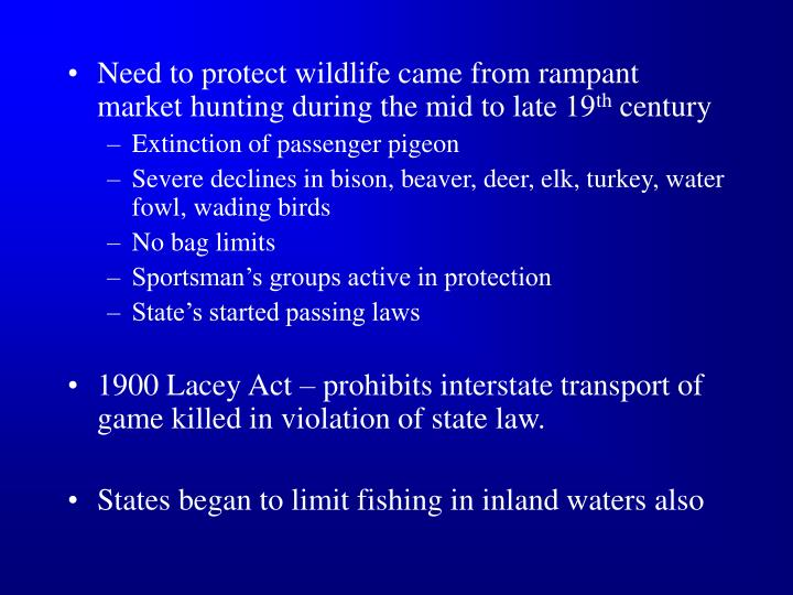 Need to protect wildlife came from rampant market hunting during the mid to late 19
