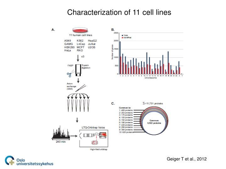 Characterization of 11 cell lines