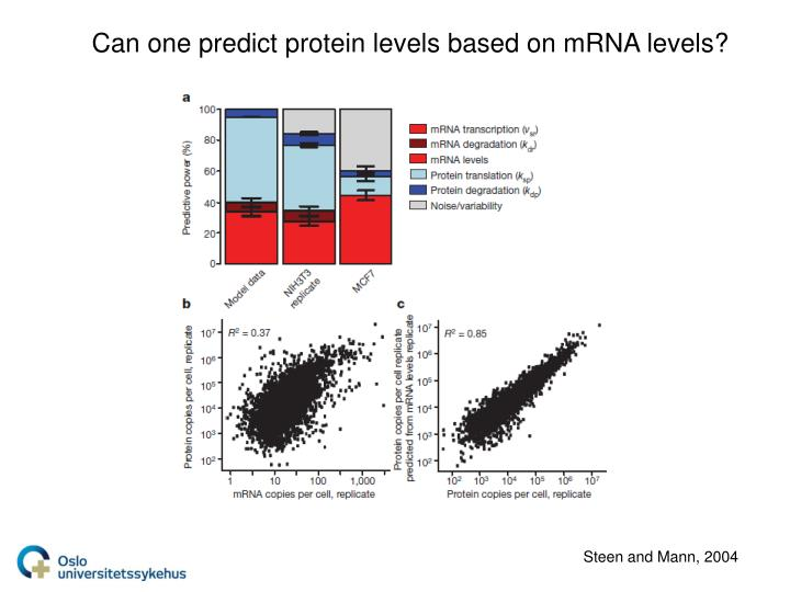 Can one predict protein levels based on mRNA levels?
