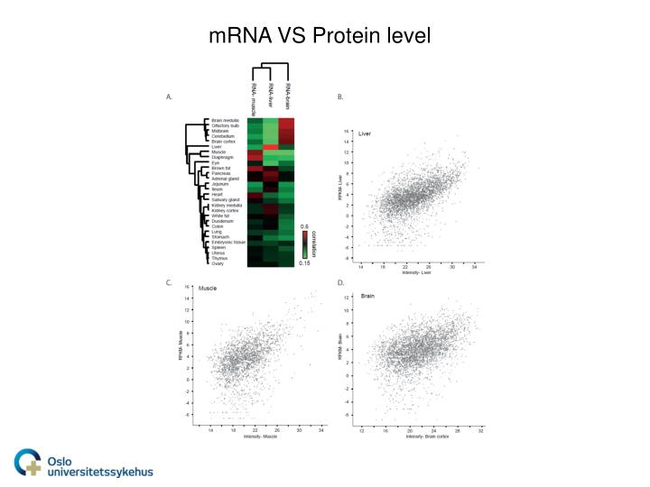 mRNA VS Protein level