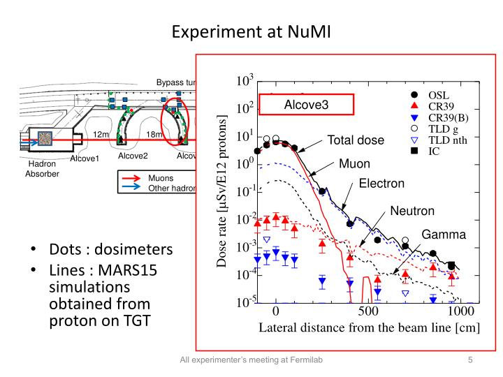 Experiment at NuMI