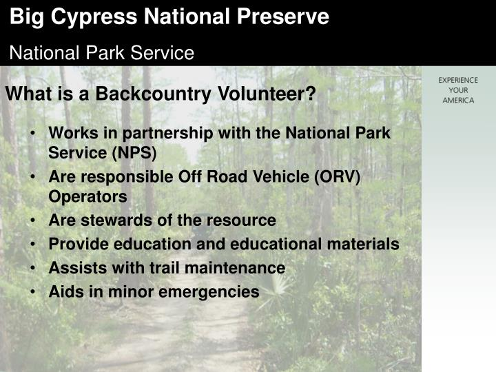 What is a Backcountry Volunteer?