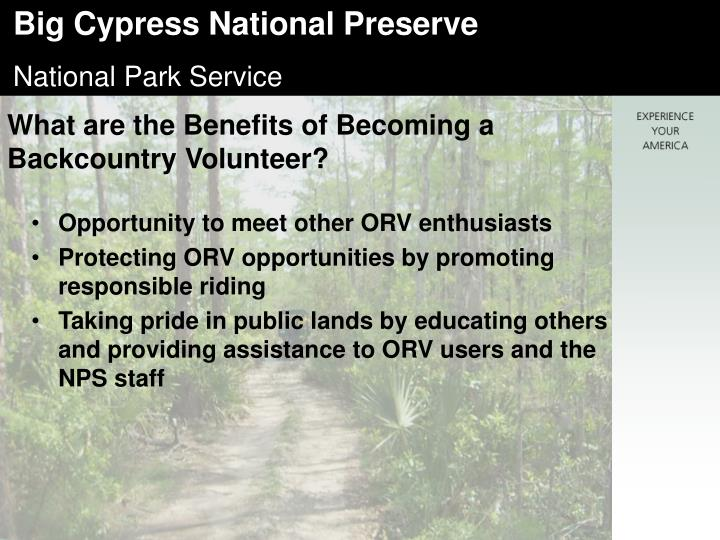What are the Benefits of Becoming a Backcountry Volunteer?