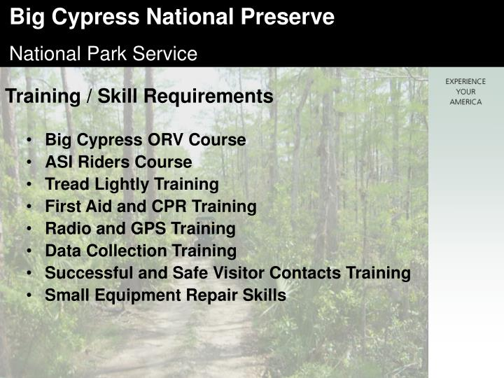 Training / Skill Requirements