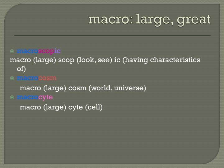 macro: large, great