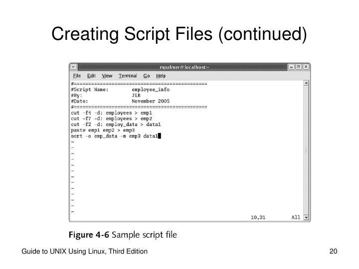 Creating Script Files (continued)