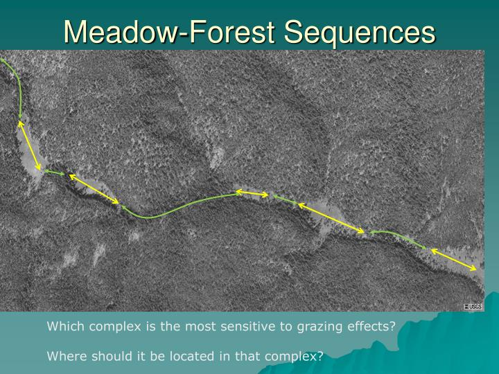 Meadow-Forest Sequences