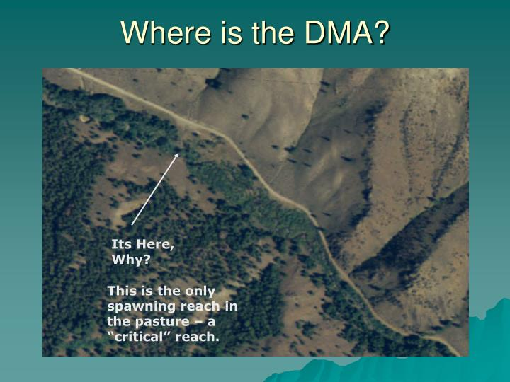 Where is the DMA?