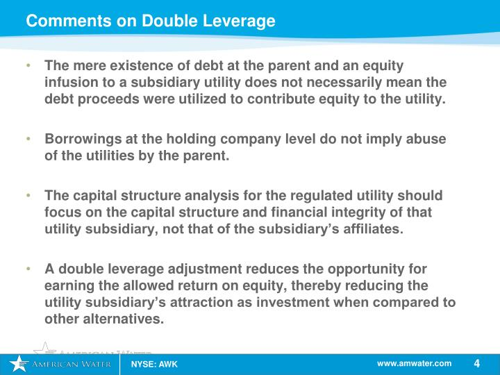 Comments on Double Leverage