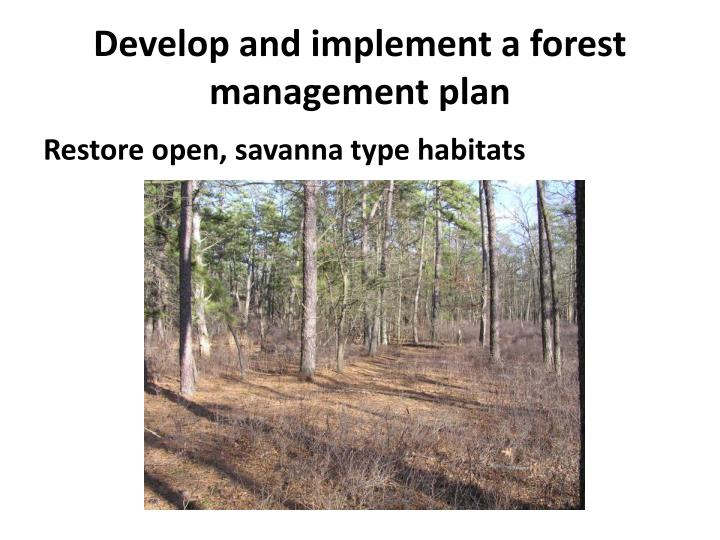 Develop and implement a forest management plan