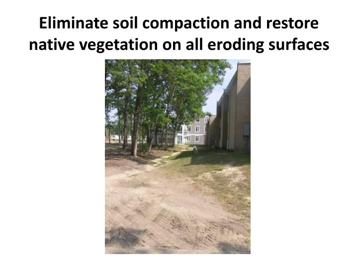 Eliminate soil compaction and restore native vegetation on all eroding surfaces