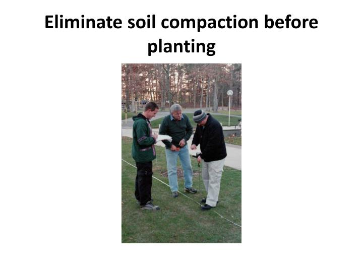 Eliminate soil compaction before planting