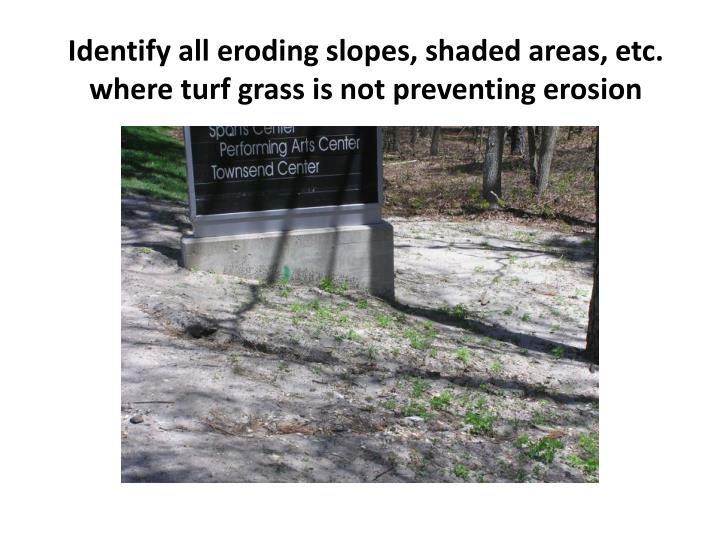 Identify all eroding slopes, shaded areas, etc. where turf grass is not preventing erosion
