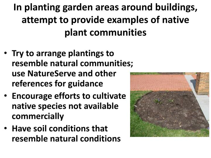 In planting garden areas around buildings, attempt to provide examples of native plant communities