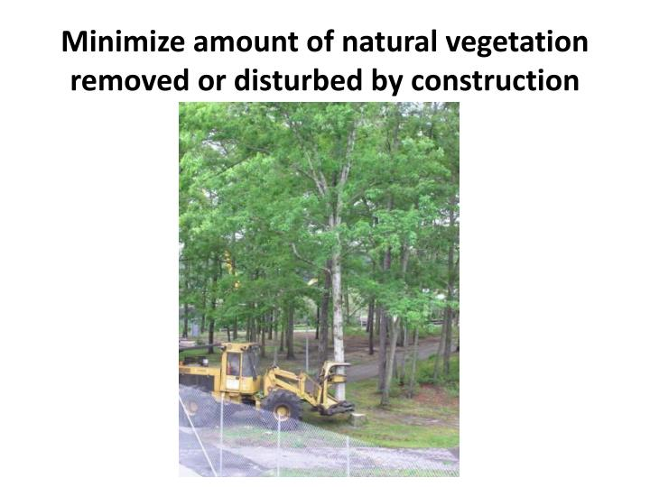 Minimize amount of natural vegetation removed or disturbed by construction