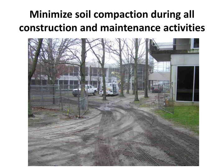 Minimize soil compaction during all construction and maintenance activities