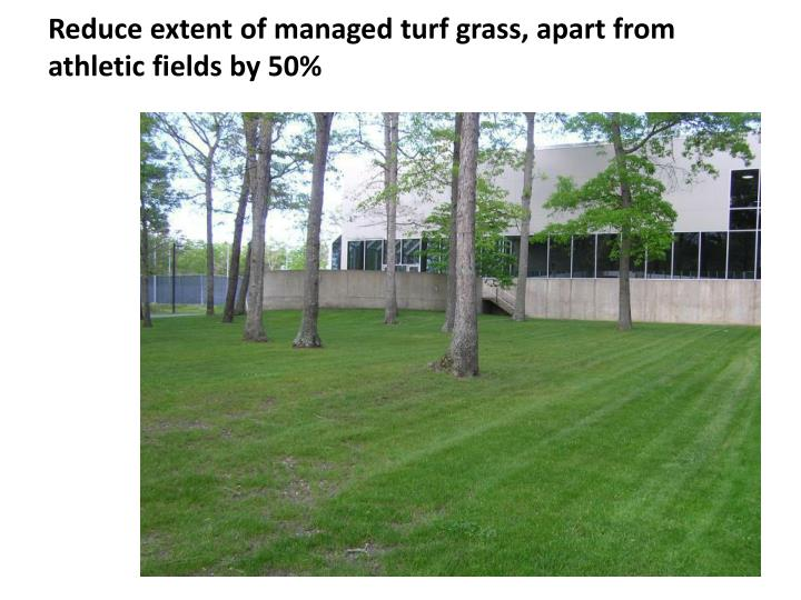 Reduce extent of managed turf grass, apart from athletic fields by 50%