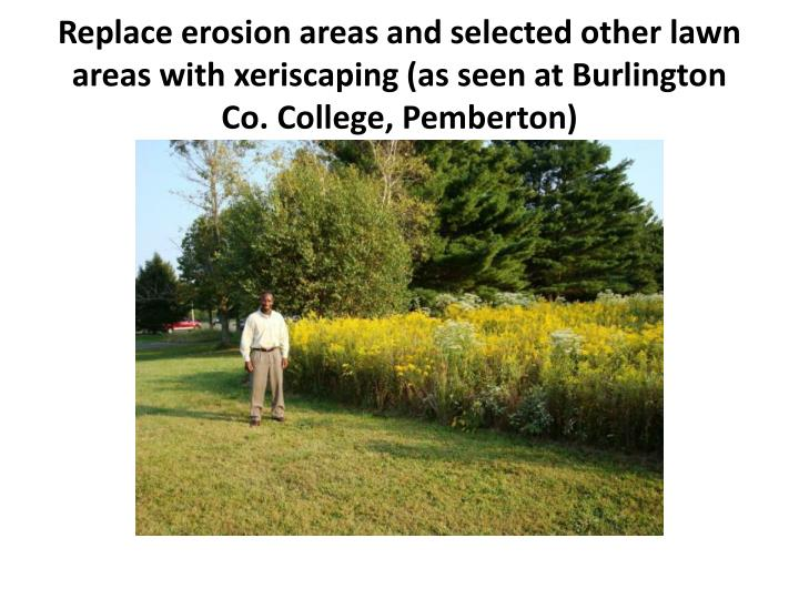Replace erosion areas and selected other lawn areas with xeriscaping (as seen at Burlington Co. College, Pemberton