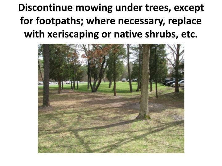 Discontinue mowing under trees, except for footpaths; where necessary, replace with xeriscaping or native shrubs, etc.