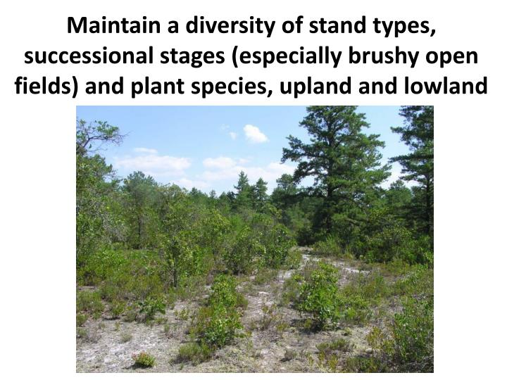Maintain a diversity of stand types, successional stages (especially brushy open fields) and plant species, upland and lowland