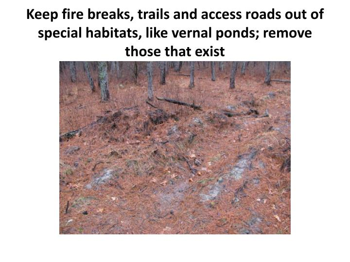 Keep fire breaks, trails and access roads out of special habitats, like vernal ponds; remove those that exist