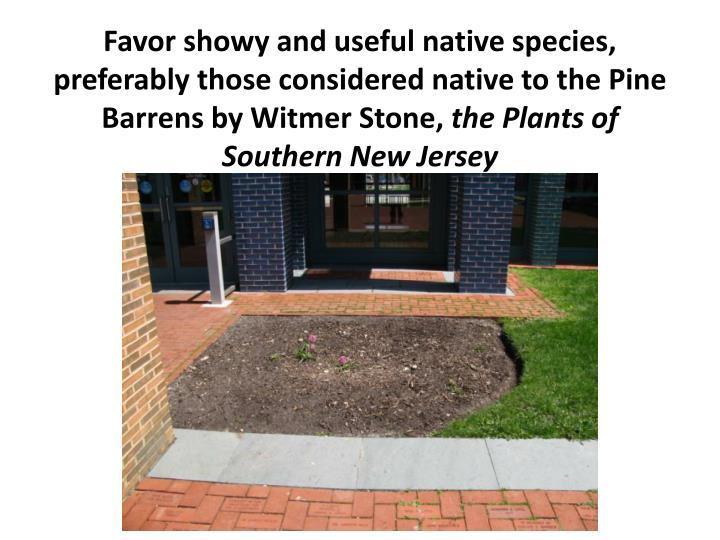 Favor showy and useful native species, preferably those considered native to the Pine Barrens by Witmer Stone,