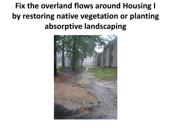 Fix the overland flows around Housing I by restoring native vegetation or planting absorptive landscaping