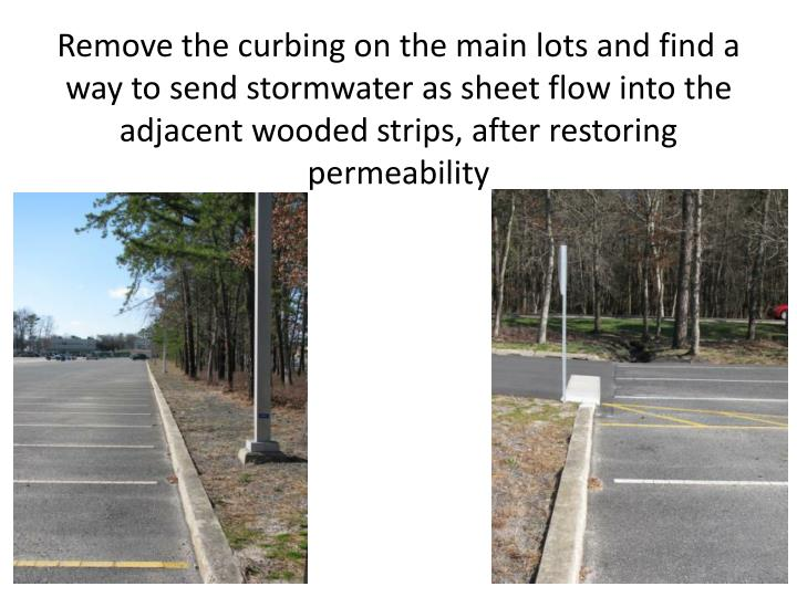 Remove the curbing on the main lots and find a way to send stormwater as sheet flow into the adjacent wooded strips, after restoring permeability