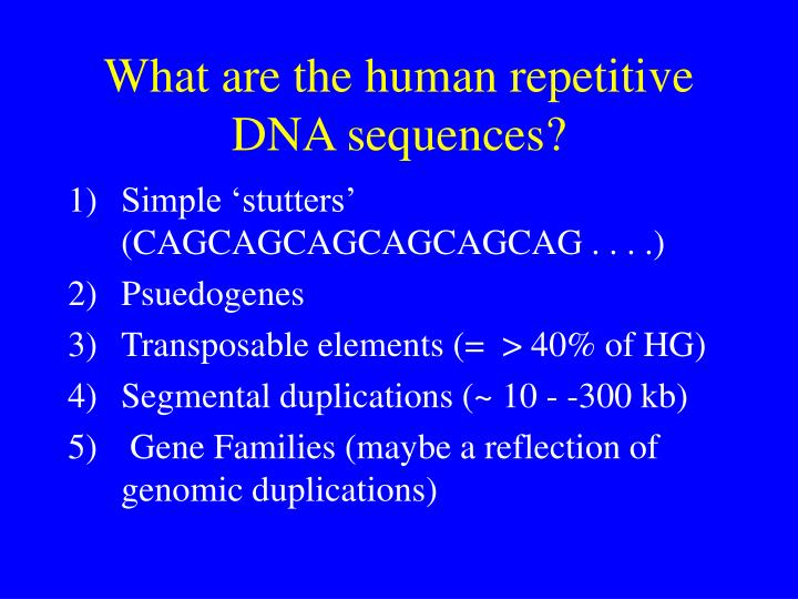 What are the human repetitive DNA sequences?