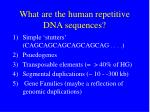 what are the human repetitive dna sequences