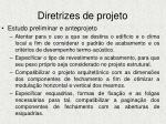 diretrizes de projeto1