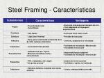 steel framing caracter sticas