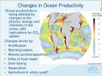 changes in ocean productivity