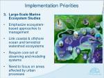 implementation priorities2