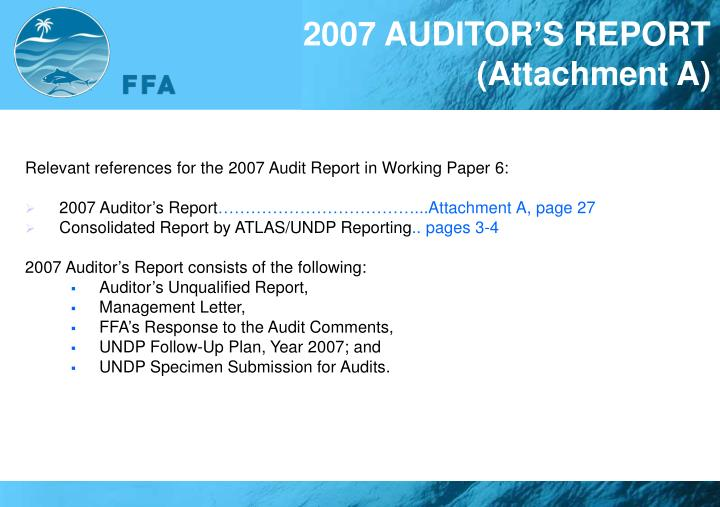 2007 AUDITOR'S REPORT