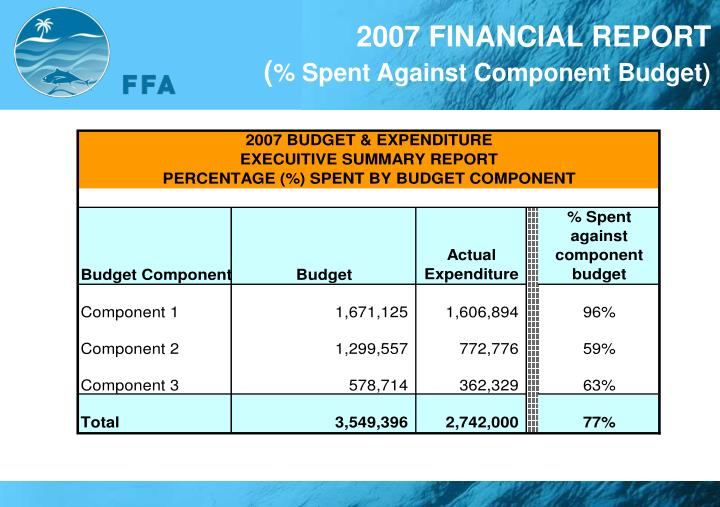2007 FINANCIAL REPORT