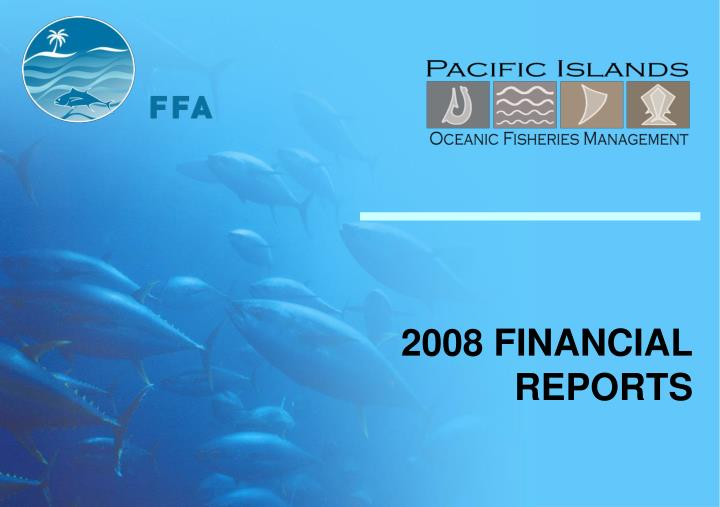 2008 financial reports